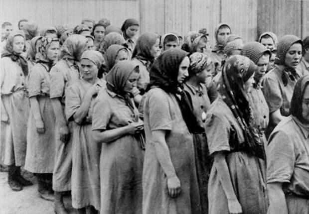 4 факта о том, как еврейка с помощью стриптиза убила самого кровавого нациста Освенцима