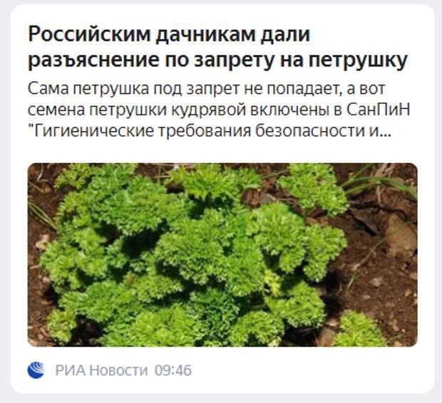 Российским дачникам дали разъяснение по запрету на петрушку