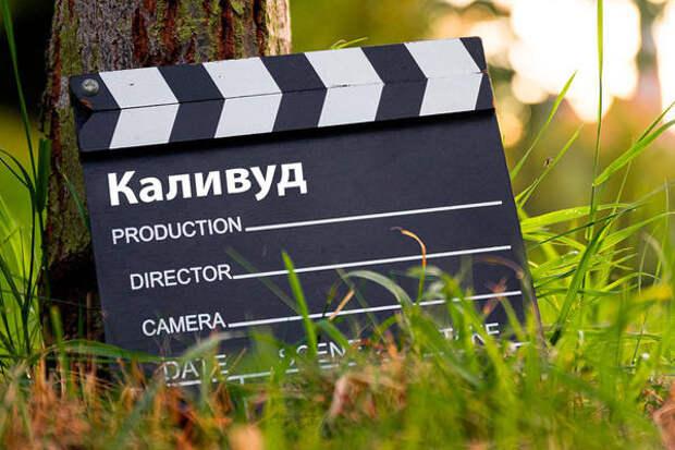 ВГосдуме рассказали, для чего России нужен «свой Голливуд»