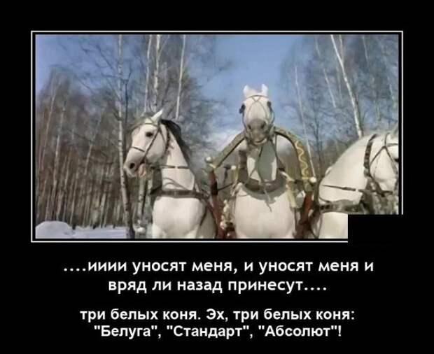 Демотиватор про коней