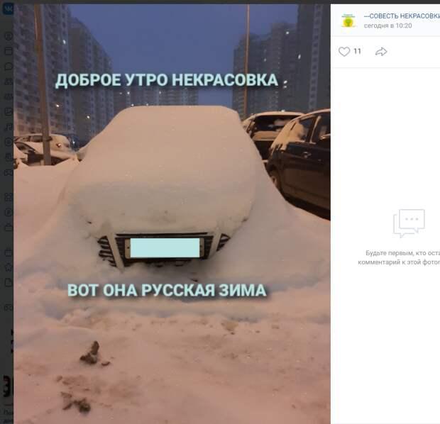 Фото дня: огромный «подснежник» в Некрасовке