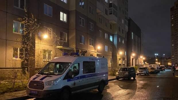 Пропавший в Нижнем Новгороде мальчик ушел гулять с бродягой и его собакой