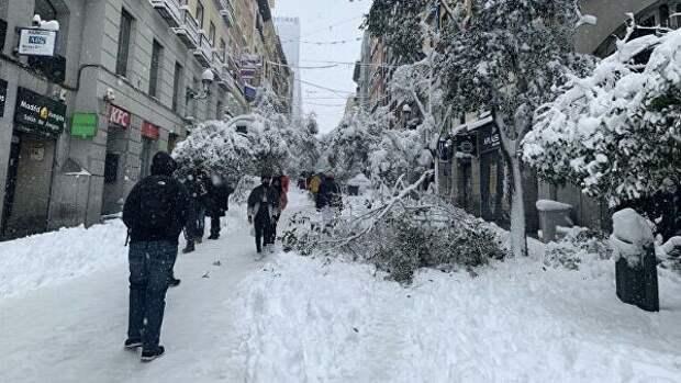 В знойной Испании прошёл самый мощный за 80 лет снегопад