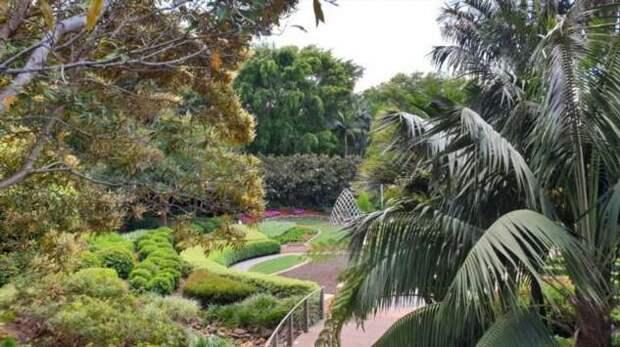 Австралийский Брисбен. Центр города. Продолжение (22 фото)