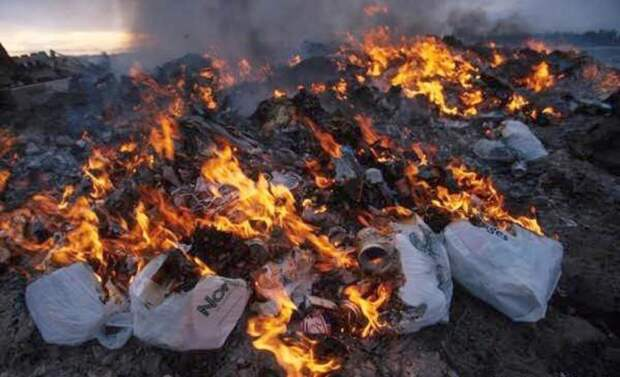 Нормально так решили утилизировать мусор: «МПБО-2» сжигает отходы рядом с полигоном в Янино