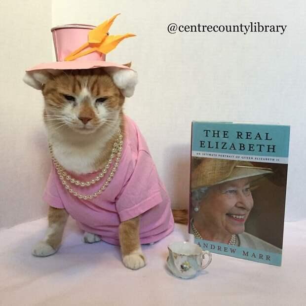 Кот-косплеер Горацио завлекает детей в библиотеку