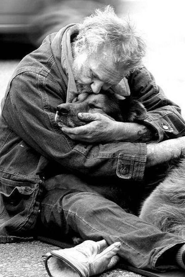 Собаки умеют прощать