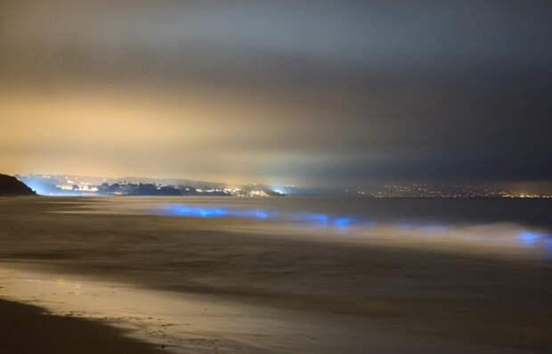Карлсбад, штат Калифорния, США Неоновые синие волны можно наблюдать и у пляжей Калифорнии. В определенный период у берега скапливается фитопланктон. При движении волн, когда волна накатывает на берег, образуется свечение.