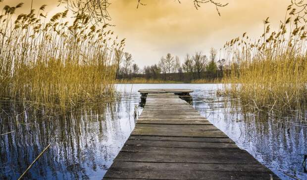 Следователи рассказали подробности гибели подростка на воде вБелгородском районе
