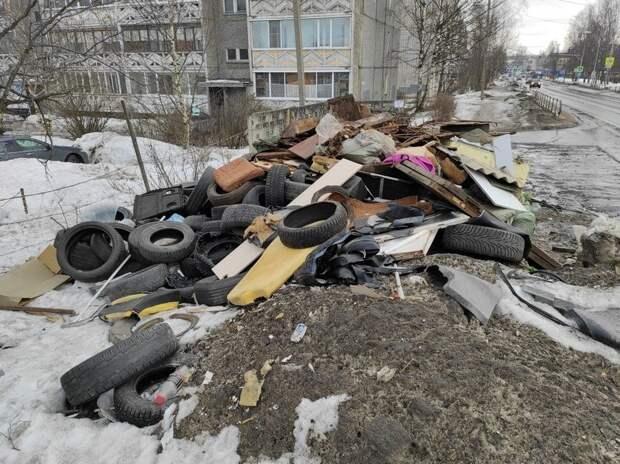 В Петрозаводске поймали нарушителей, которые выбросили шины на помойку