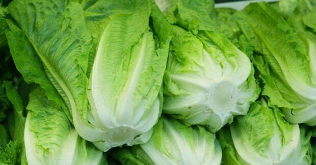 Узнайте почему его стоит есть как можно чаще: 10 преимуществ салата