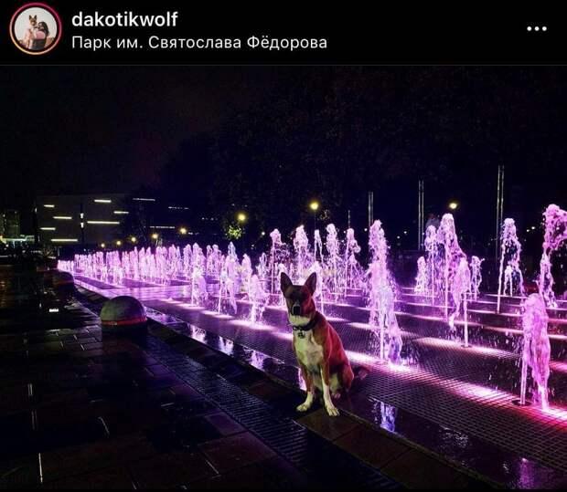 Фото дня: в парке имени Федорова включили фонтан