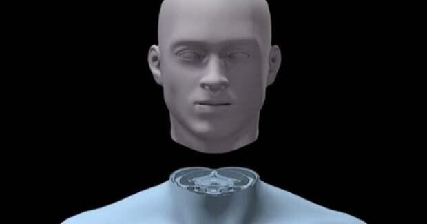 Пересадка головы будущее, в мире, животные, интересное, люди, наука, эксперимент