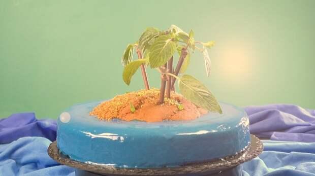 Необычный торт «Необитаемый остров»: нравится абсолютно всем