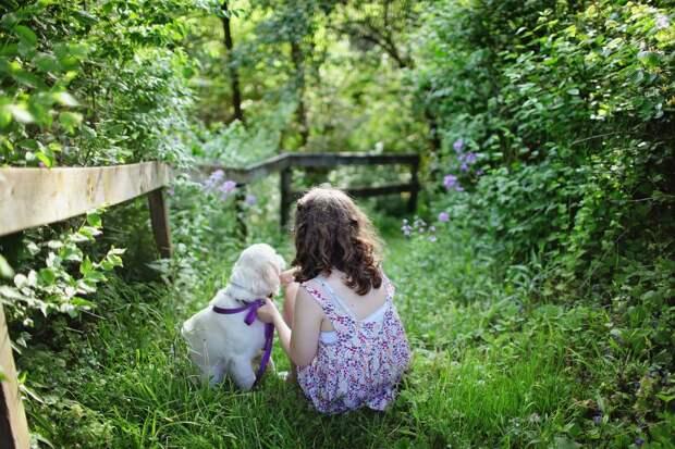 Семья вернула собаку, которая бесследно исчезла из сада 11 лет назад