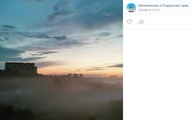Фото дня: парк «Подрезково» накрыл туман