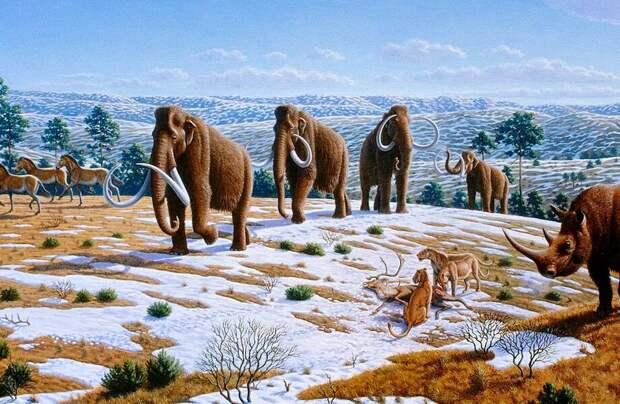 5 существ, живших тысячелетия назад: что сберегла вечная мерзлота России