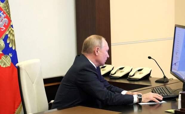 Путин в онлайн-формате принял участие в переписи населения