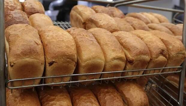"""Сотрудников """"Пятерочки"""" в Сызрани заставляют поливать грязной водой нераспроданный хлеб"""