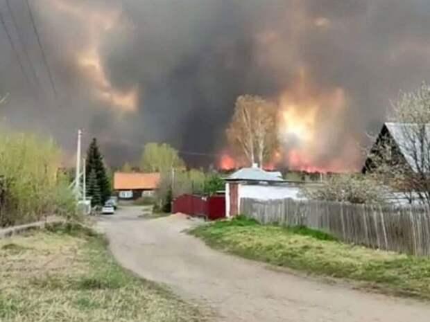 ВКазахстане из-за лесного пожара 83 человека лишились жилья— видео