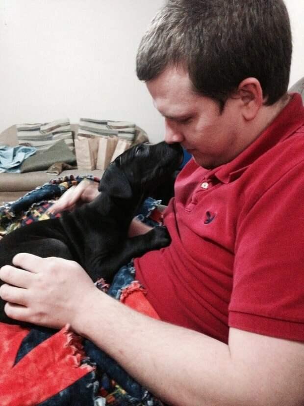 17 собак, которые только что познакомились со своими хозяевами