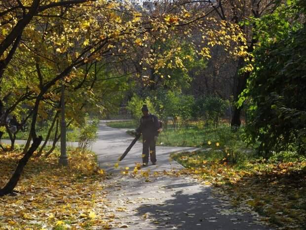 Жители округа жалуются на уборщиков листьев