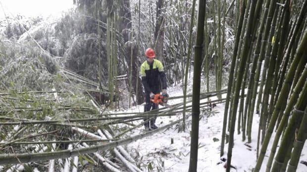 Энергетики восстановили энергоснабжение 50% жителей, пострадавших от природной стихии в Сочи