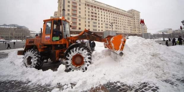 Снежный флэшмоб прошел в Беговом