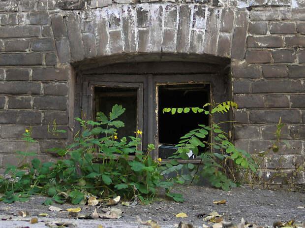 Почему во многих старых домах окна торчат из-под земли