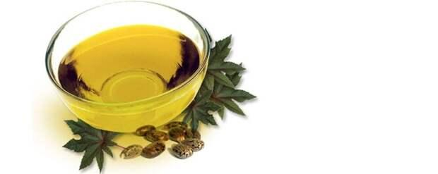 Касторовое масло, получаемое из клещевины, применяется не только в качестве слабительного, но и как пищевая добавка. Но необработанные семена клещевины содержат рицин – один из сильнейших белковых токсинов, известных человечеству. К счастью для нас, при создании касторки, он полностью разлагается.