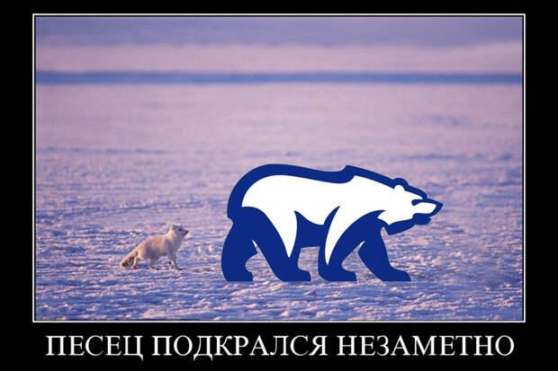 Arctic-Fox+Polar-Bear