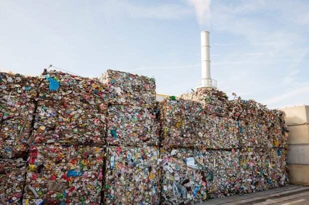 Абрамченко одобрила дорожную карту по развитию системы утилизации отходов