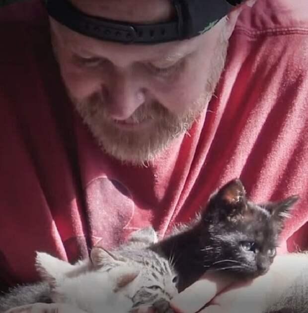 Мужчина с котятами
