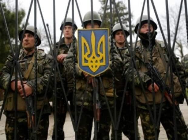 """Бойцы батальона """"Львов"""", недовольные руководством, вернулись домой"""