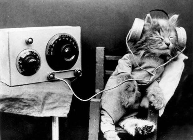 Споры о том, кто был изобретателем радио, ведутся и сегодня.