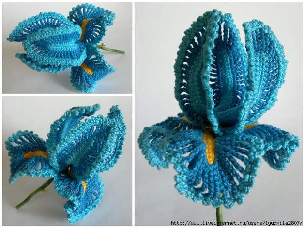 crochet_iris (640x480, 252Kb)