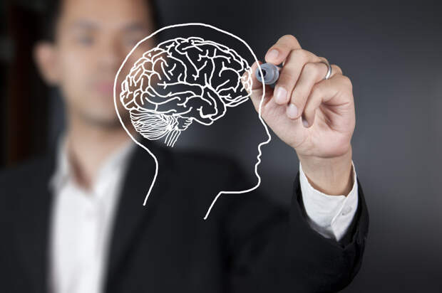 10 фактов о работе мозга, которые доказывают, что мы способны на все.