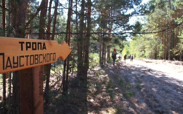 В Солотче хотят воссоздать станцию узкоколейки для Тропы Паустовского