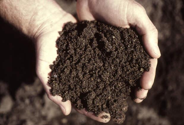 http://blogs.oregonstate.edu/cultivatingservice/files/2013/01/soil1.jpg