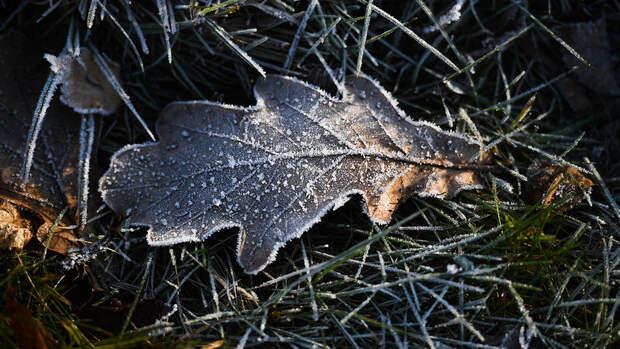 В Гидрометцентре рассказали, что ряд регионов РФ в ближайшие дни ждет опасная погода