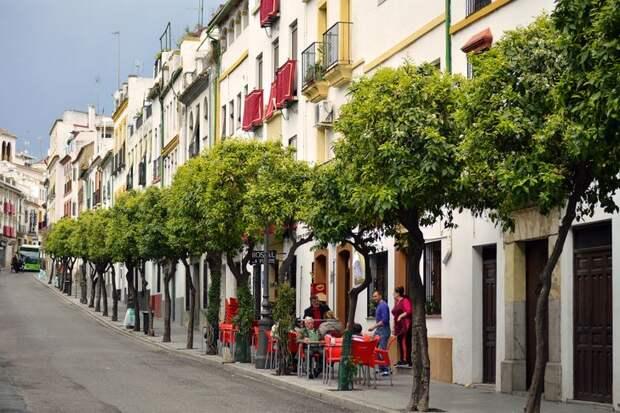 10 фактов об испанцах и их стране, которые вас изрядно удивят