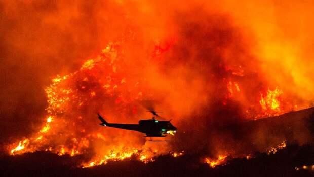 Шесть человек стали жертвами лесных пожаров в трех штатах США