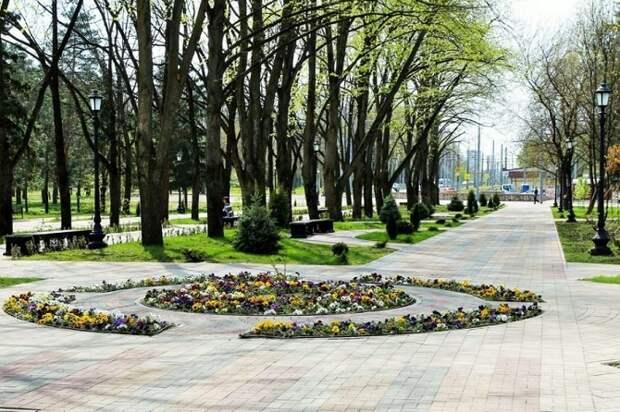 На Кубани выбирают зеленые зоны для благоустройства