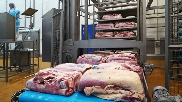 Подмосковье в два раза увеличило экспорт мяса и вышло на 1 место в России