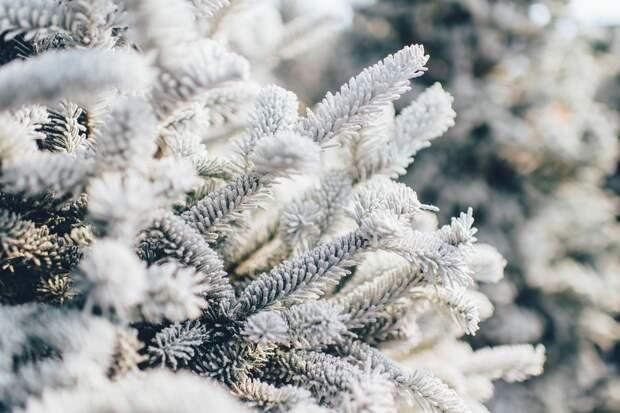 До -14 градусов по Цельсию ожидается в Удмуртии в понедельник