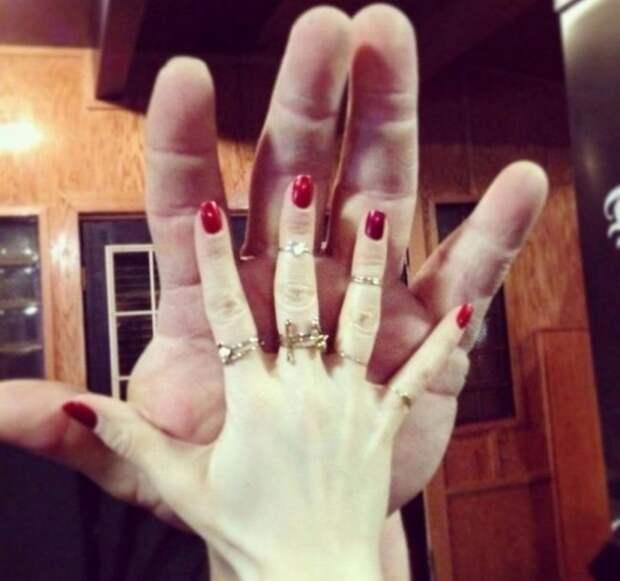 Самая большая рука в мире