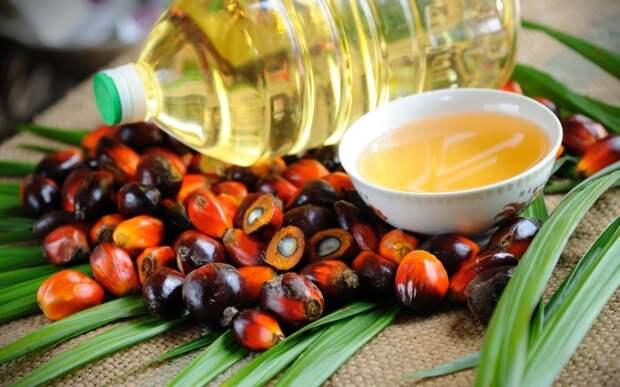 оливковое масло для жарки как выбрать