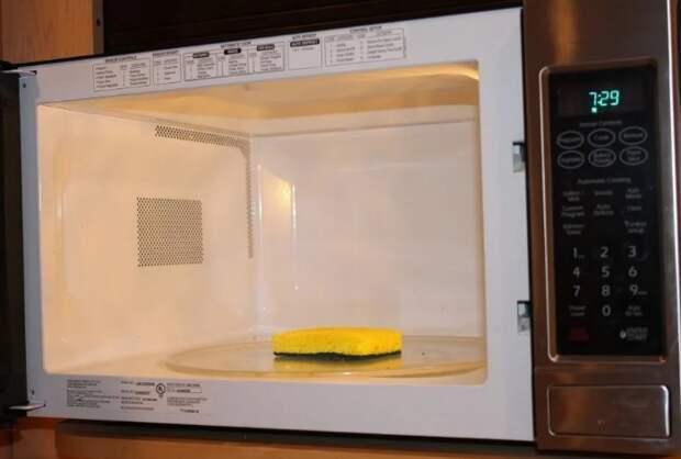 Губку можно дезинфицировать в микроволновке, но только мокрую / Фото: s4.scoopwhoop.com