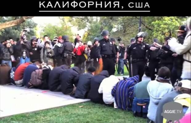 «Россия – цитадель свободы»: блогер сравнил полицию Москвы и США