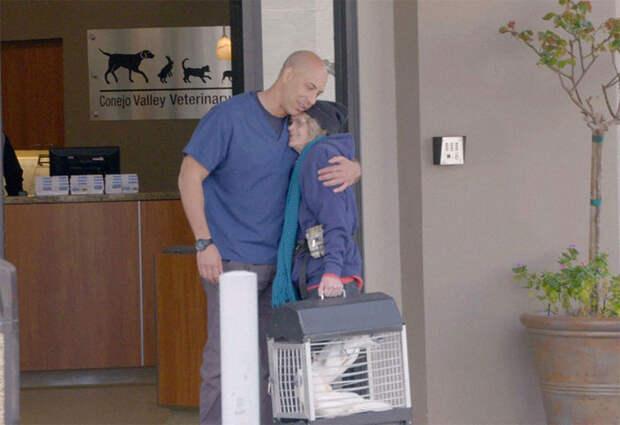 Ветеринар из Калифорнии бесплатно лечит бездомных животных